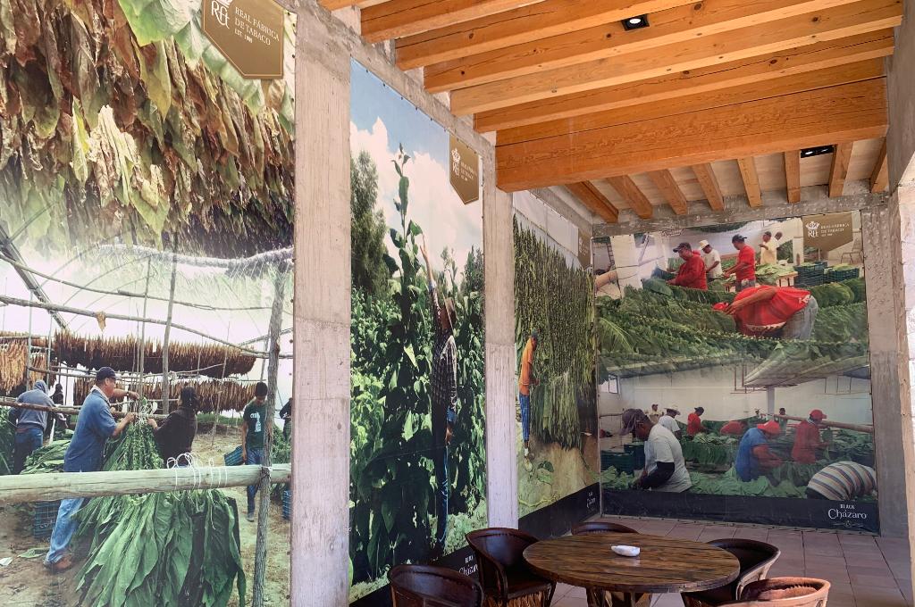 Real Fábrica de Tabaco: Un imperdible de la Ruta Arte, Queso y Vino